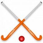 Mannenhockey in de 20e eeuw, succesvolste jaren (1996-2000)