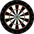 Dartspelers: Darryl Fitton - Engeland (BDO)