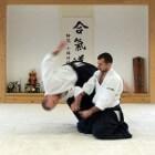 Aiki-Ninpo, Japanse verdedigingssport