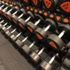 Train de spieren van de armen met deze fitness oefeningen