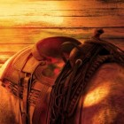 Paardensport westernrijden: Reining