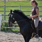 Natuurlijk paardrijden: Centered Riding