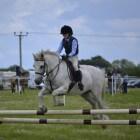 Paardensport: Springen