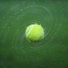 Grand Slam Wimbledon 2016, prijzengeld en live op tv