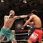 MMA: Waar alle vechtsporten samenkomen