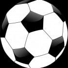 Teckel Messi de populaire stamgast van Studio Brasil 2014
