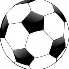 AA Gent: geschiedenis en palmares van de club