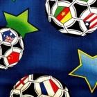 Bijnamen nationale voetbalteams WK 2018: overzicht