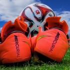 Voetbalelftal Kameroen - WK voetbal 2010: de verrassing?
