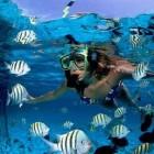 Eenvoudige snorkeltips voor beginners