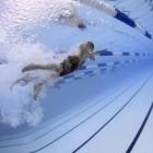 Wedstrijdzwemmen: de organisatie en regels