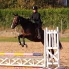 Paardrijden tijdens de Olympische Spelen van Rio 2016