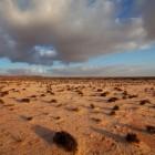 Dakar Rally 2015: route, start, finish, datum en inschrijven