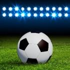 Kwalificatie WK voetbal Zuid Afrika; de play offs